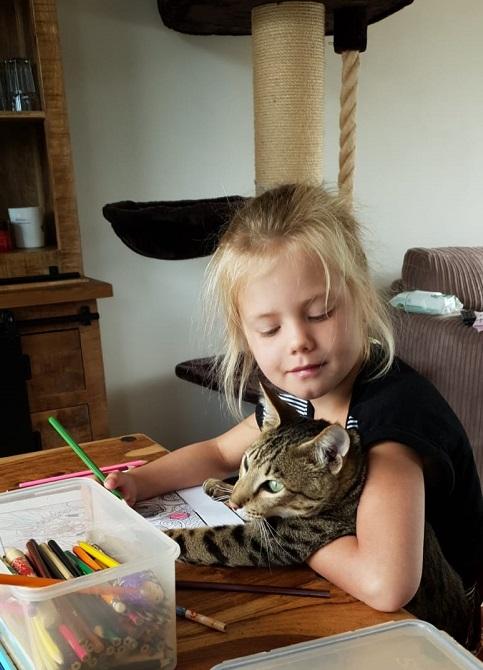 meisje met savannah kitten