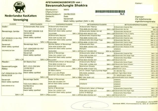 Afstammingsbewijs N.R.K.V.
